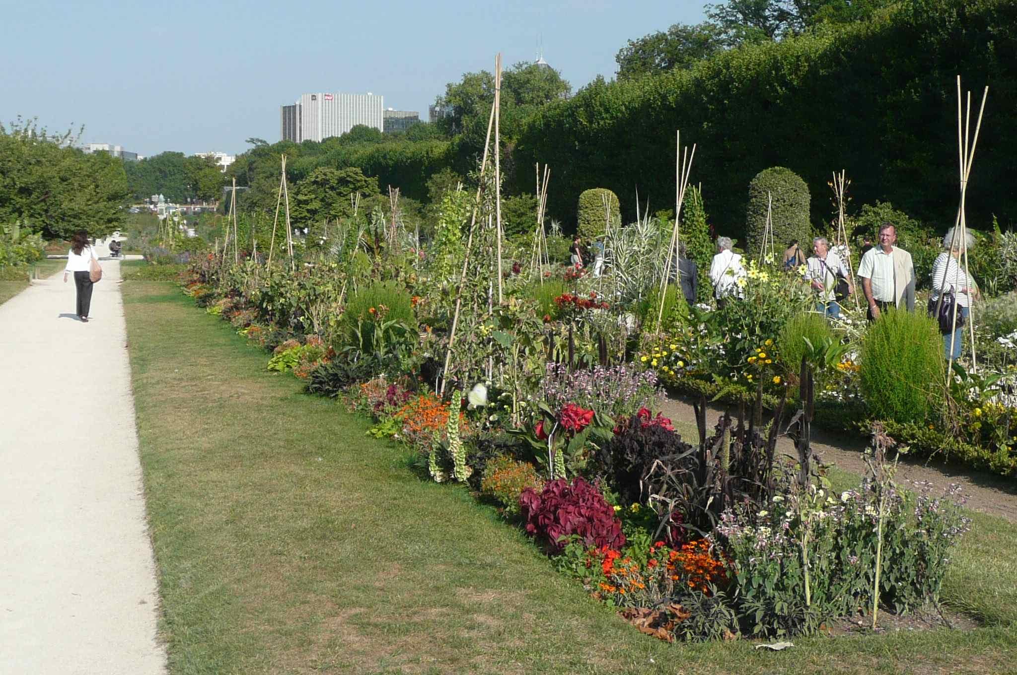 Jardin des plantes chunnel vision for Paris jardin plantes